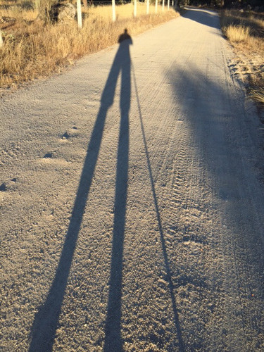 a sombra.jpg
