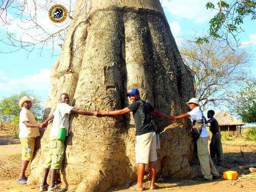 4_Girassol Guides-Vinho Baobab.jpg