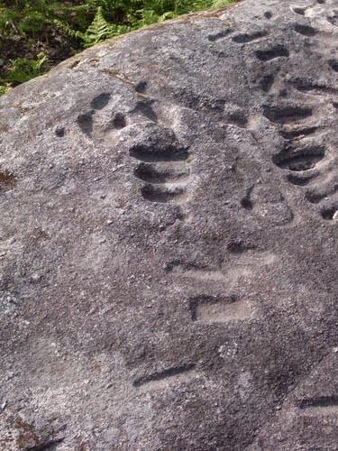 Necrópole da Tapada de Sequeiros
