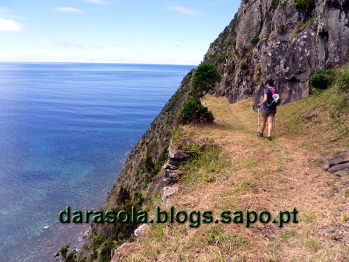 Azores_flores_faja_grande_07.JPG