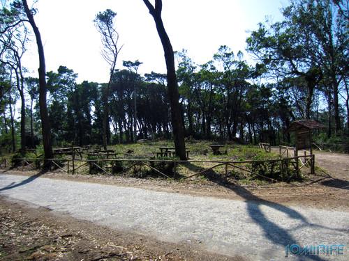 Parque de merendas do Vale da Ramela na Serra da Boa Viagem na Figueira da Foz destruído pelo temporal (1) Parque [en] Picnic park of Ramela Valley in Figueira da Foz in Portugal destroyed by the storm - Park