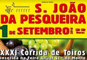 SENHORA DO MONTE.png