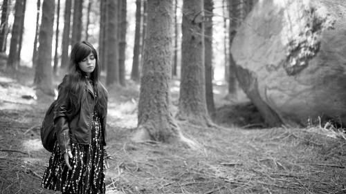 A Floresta das Almas Perdidas - O destino de Carol
