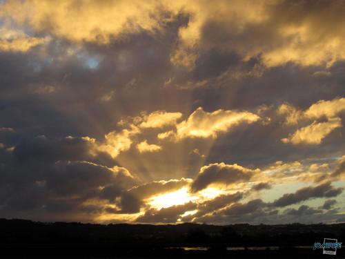 Raios de sol / Sunbeams