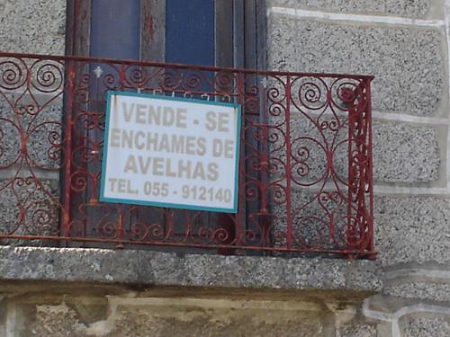 «Enchames de avelhas», Felgueiras (Liliana Isabel, 2006)