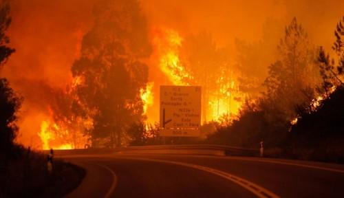 ha-19-mortos-e-varios-desaparecidos-no-fogo-de-ped
