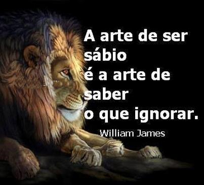 A arte de ser sábio é a arte de saber o que ignorar