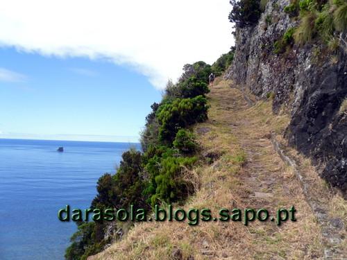 Azores_flores_faja_grande_12.JPG