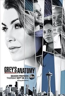 220px-Grey's_Anatomy_season_14_poster.jpg