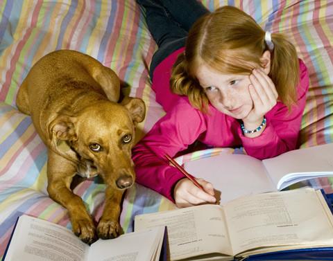 Menina e cão.jpg