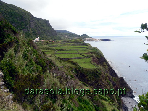 Azores_flores_faja_grande_08.JPG