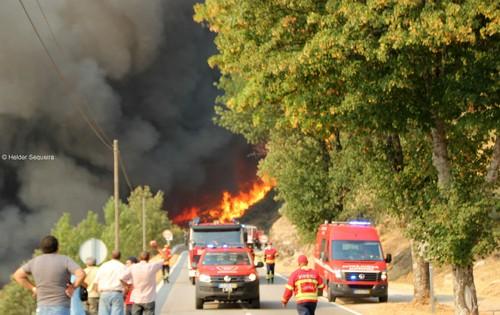 Incêndio na EN 18 - Guarda - Foto HS.jpg