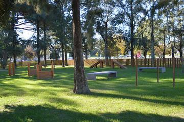 Parque Canino.jpg