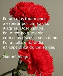 Manuela Alegre