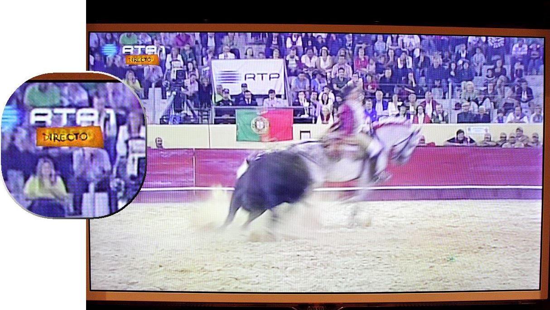 XVII Grande Corrida TV Norte, Póvoa de Varzim (R.T.P., 26/7/13)