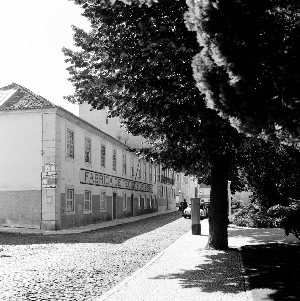 Jardim das Amoreiras e a fábrica de tecidos de se