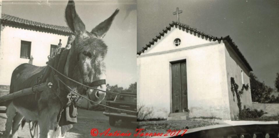 Casalinho2.jpg