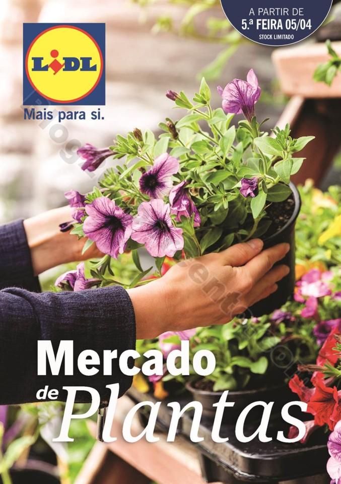 plantas_lidl_mercado_000.jpg