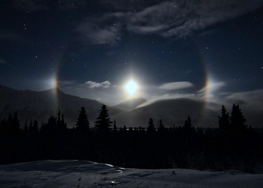moondog_saarloos.jpg