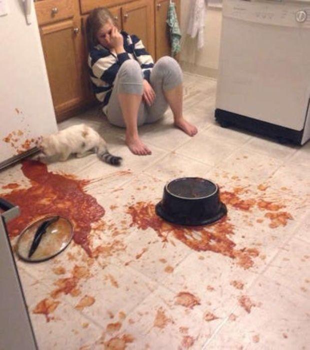 este-gato-decidiu-redecorar-o-chao-da-cozinha-derr
