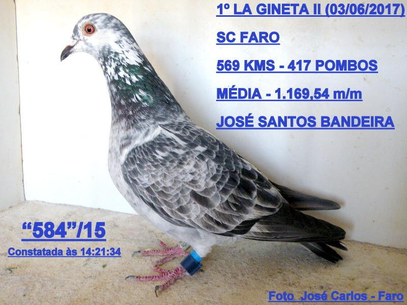 La Gineta 2 015.JPG