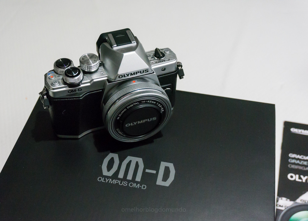 DSC03686.jpg