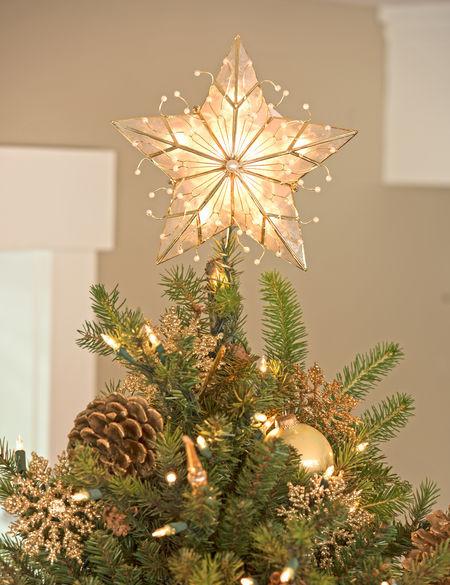 8591135_4313_capiz-star-christmas-tree-topper.jpg