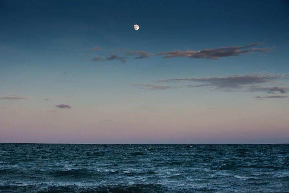 moonlight_09.jpg