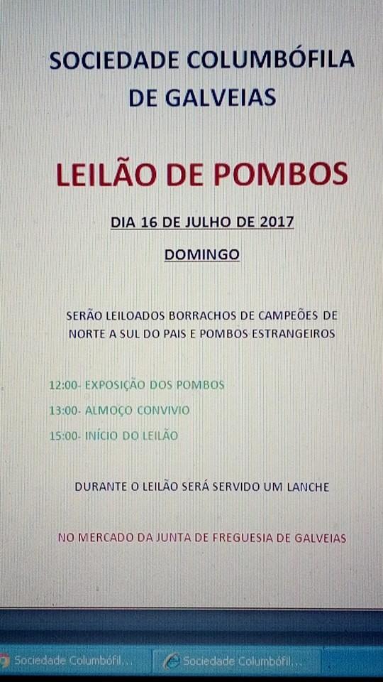 Leilão Galveias.jpg