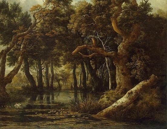 Marsh 2.jpg