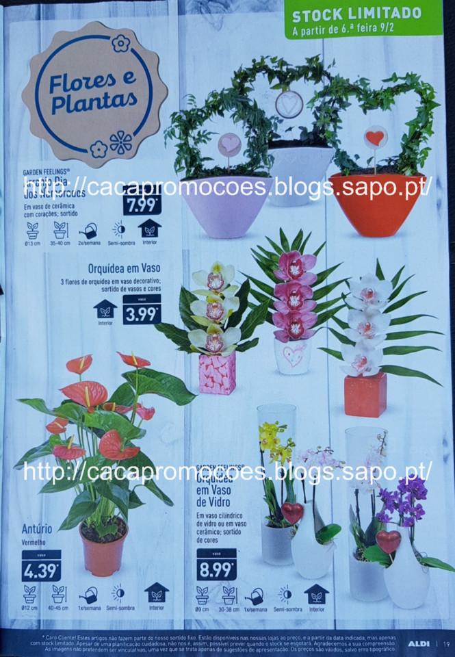 aldi folheto 0_Page19.jpg