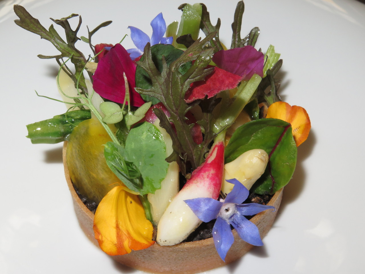Jardim do Chef, legumes, ervas, flores, crumble de granola e espuma de queijo