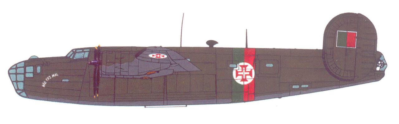 B-24D Liberator / PB4Y (Anón., in Wings Palette)