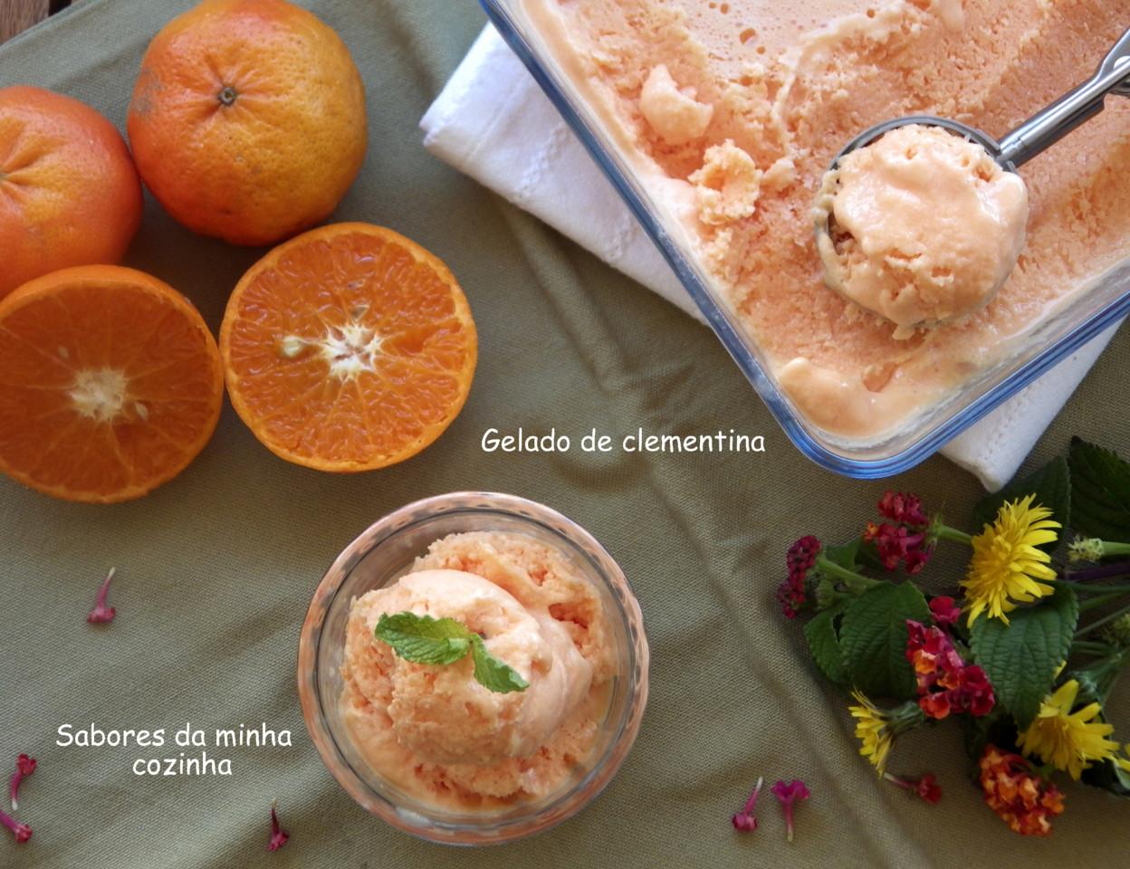 IMGP8583-gelado de clementina-Blog.JPG