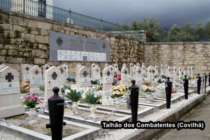 TALHÃO COVILHã (01).JPG