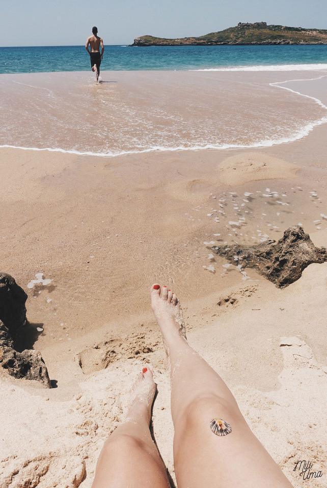 ilha-do-pessegueiro-miliuma.jpg