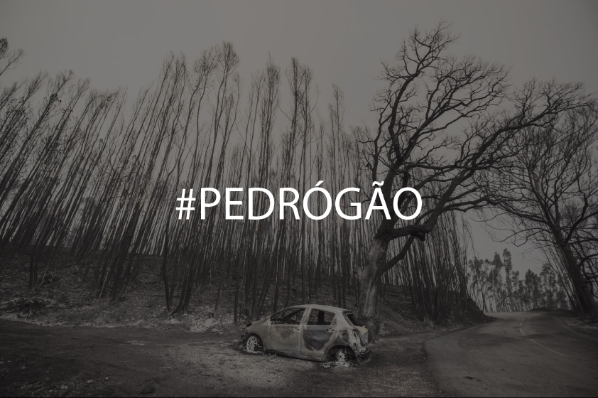 PEDRÓGÃO.png