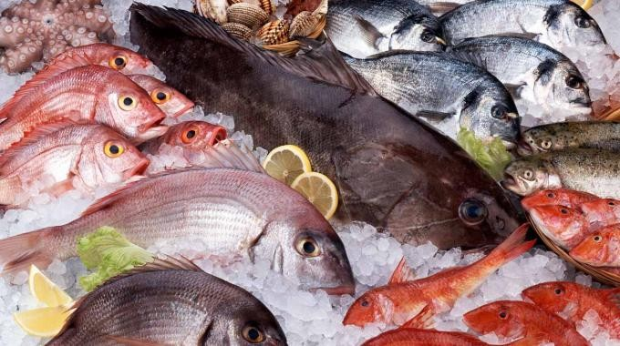 peixe fresco promoção descontos