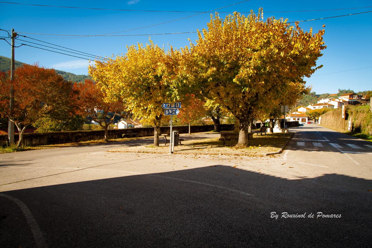 Outono em Pomares (3).JPG
