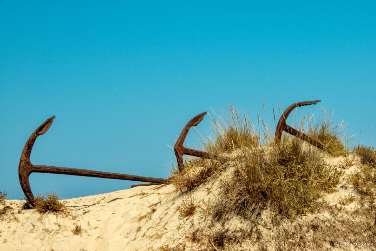 2013 - Fuzeta+Praia do Barril 101.jpg
