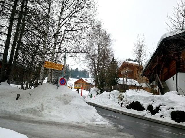 Alpes24.jpg