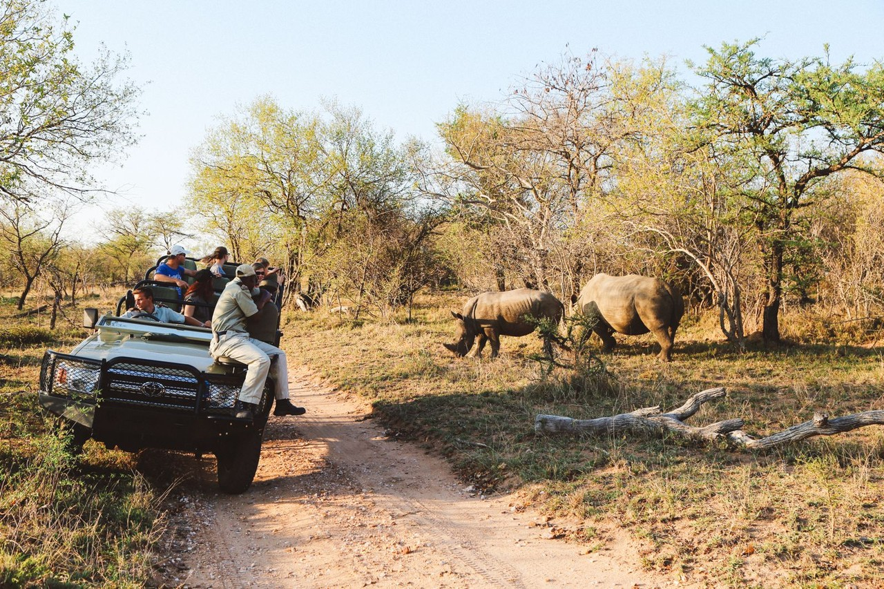 Safari-in-South-Africa-038.jpg
