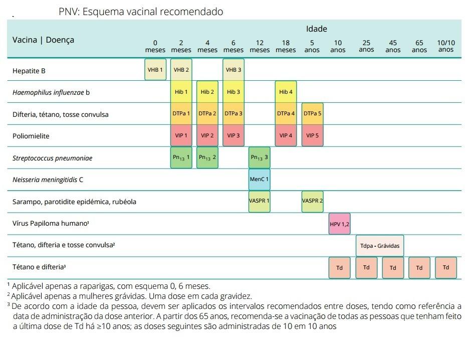 Calendário de vacinação recomendado.jpg