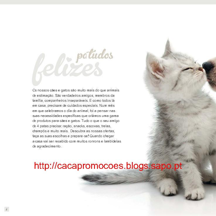 pp_Page2.jpg