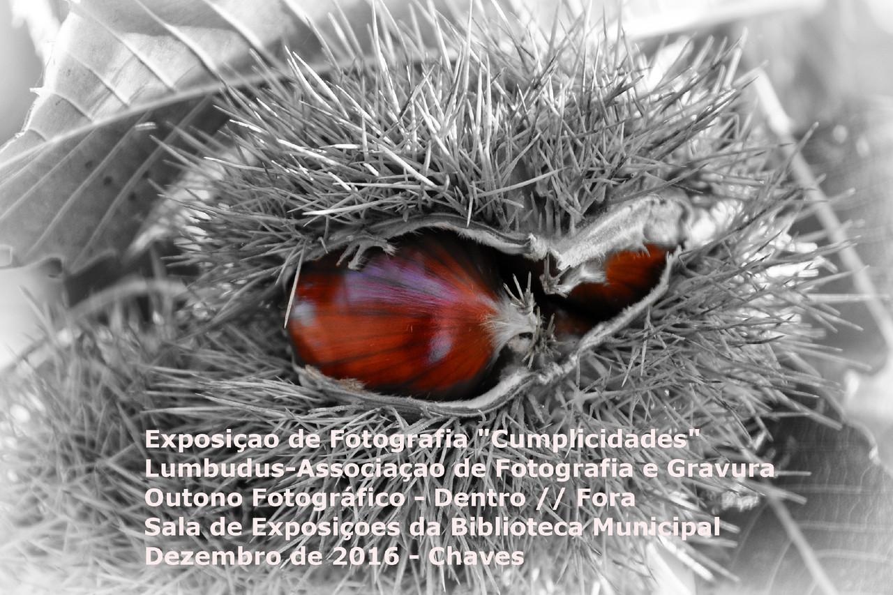 CartazOutonoFotografico.jpg