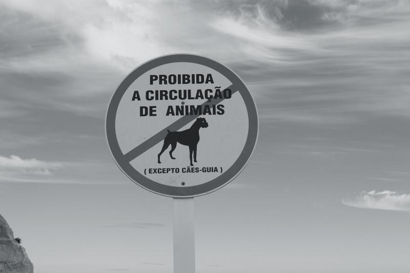 Praia da Falésia. Algarve (c) 2014