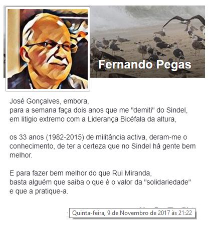 FernandoPegas8.png