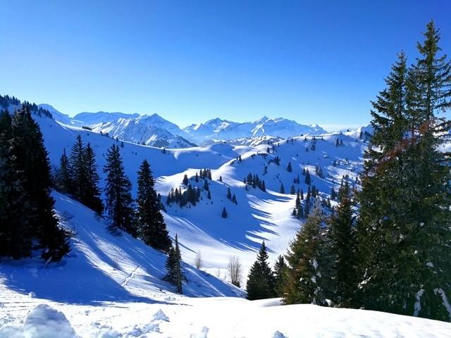 Alpes32.jpg