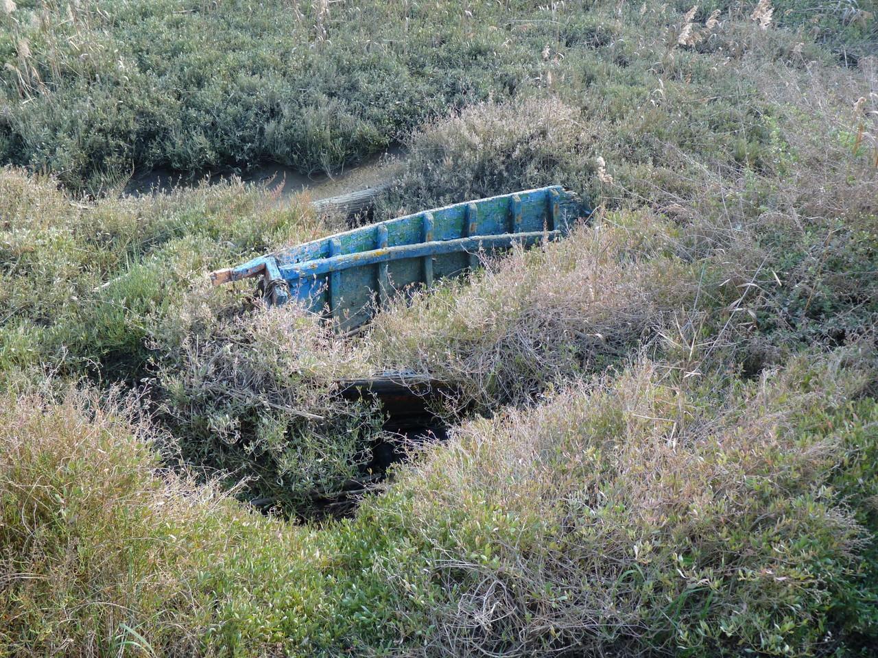 Parque Linear Ribeirinho do Estuário do Tejo (21)