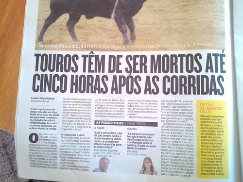 MORTE DE TOUROS.jpg